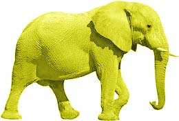 elephant-yellow.jpg