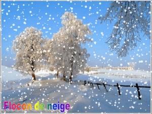Flocon de neige